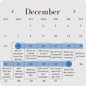 12 days of christmas meraki holiday specials